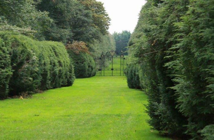 trädgårdstjänster malmö