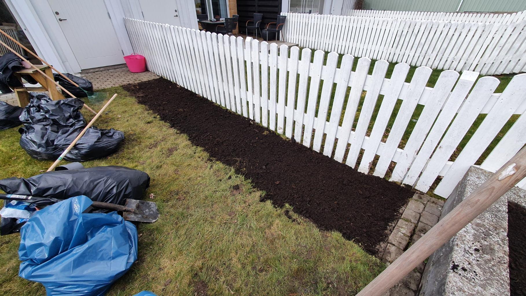 rabatt trädgård